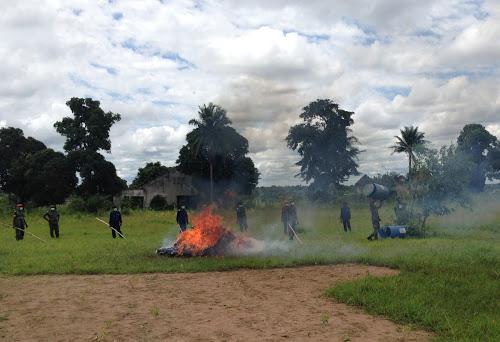 Kikwit : incinération de quatre sacs du chanvre par la justice militaire